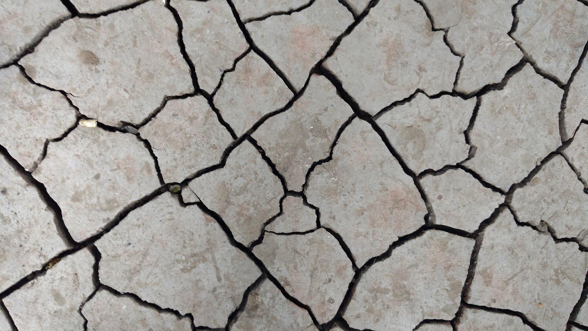 trzęsienie ziemi, fala sejsmiczna, fala mechaniczna, pęknięty grunt